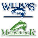 Williams_Moose_Square