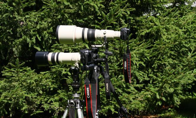 BFaanesCamera2